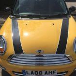 car-graphics-Mini Bonnet stripes