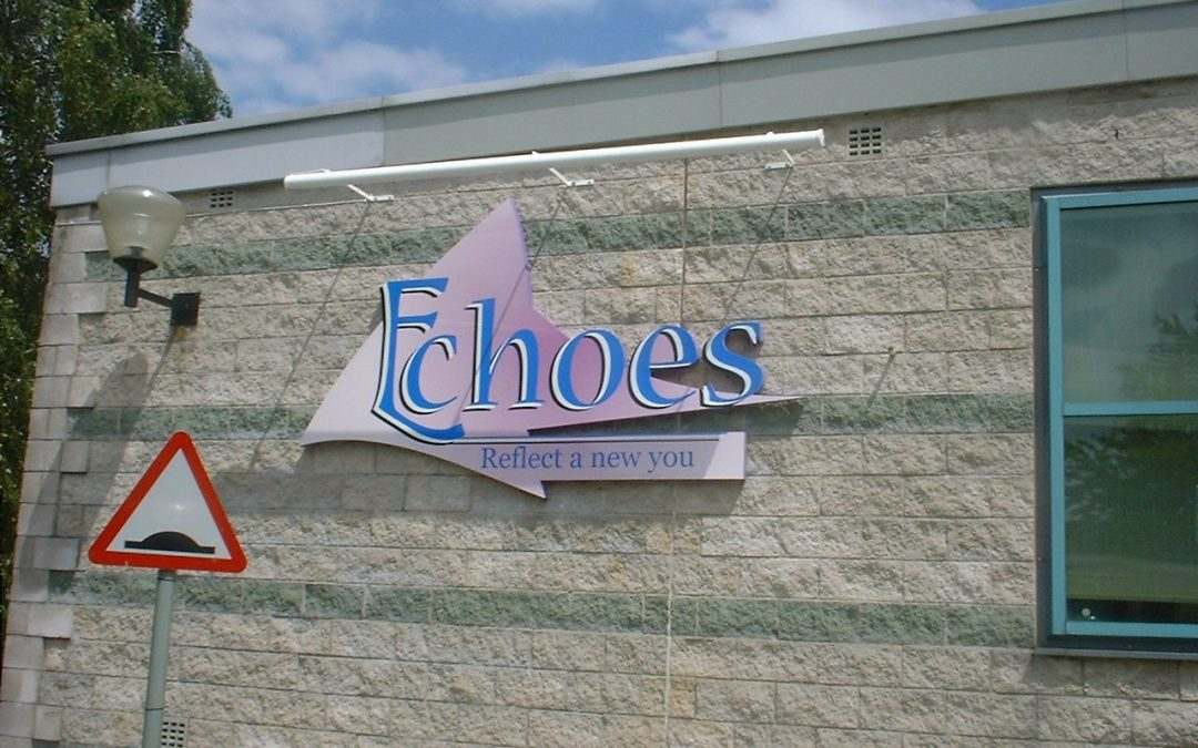 illuminated sign - Echoes Gym sign & troughlight